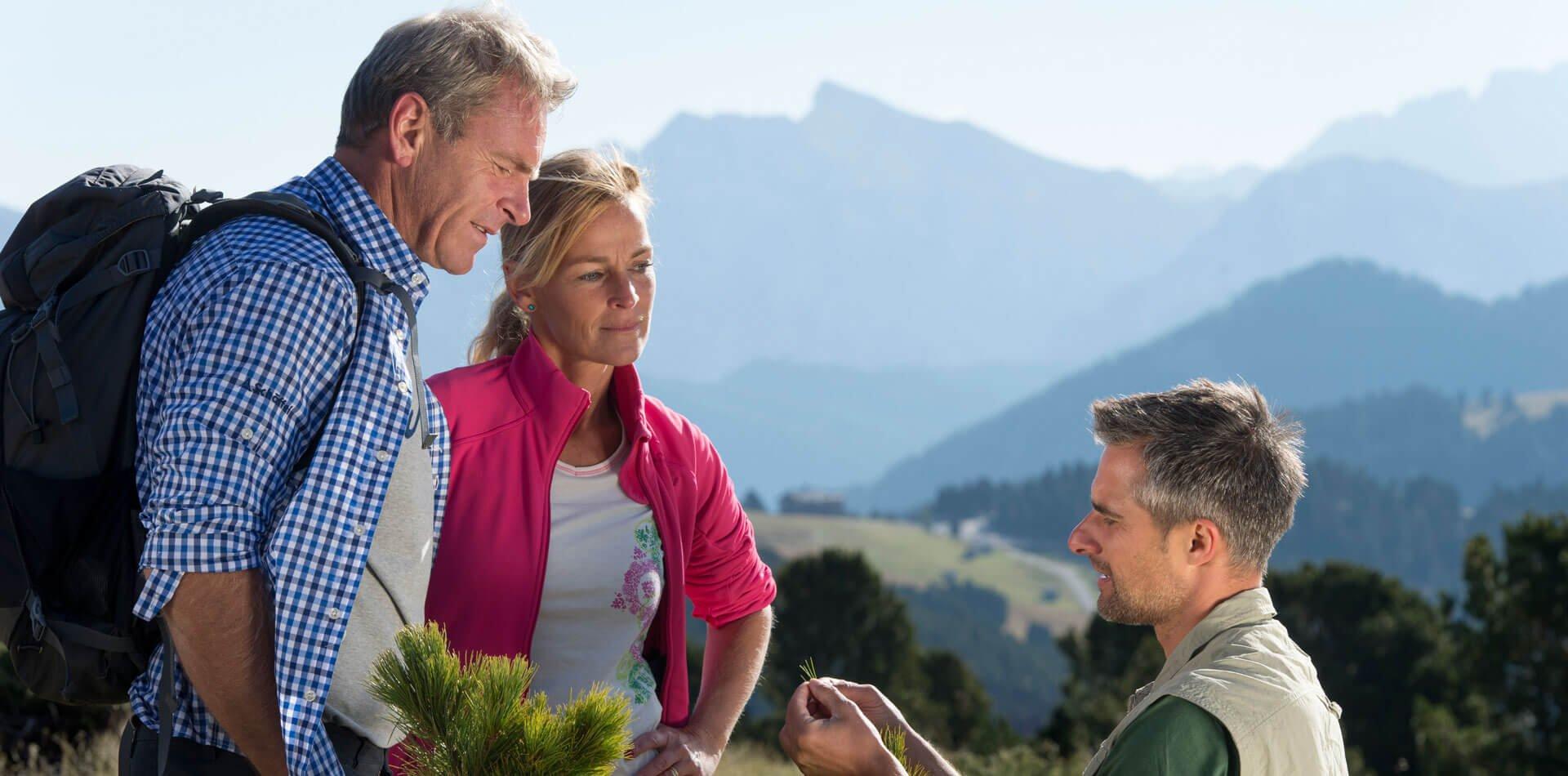 Ferien in den Dolomiten
