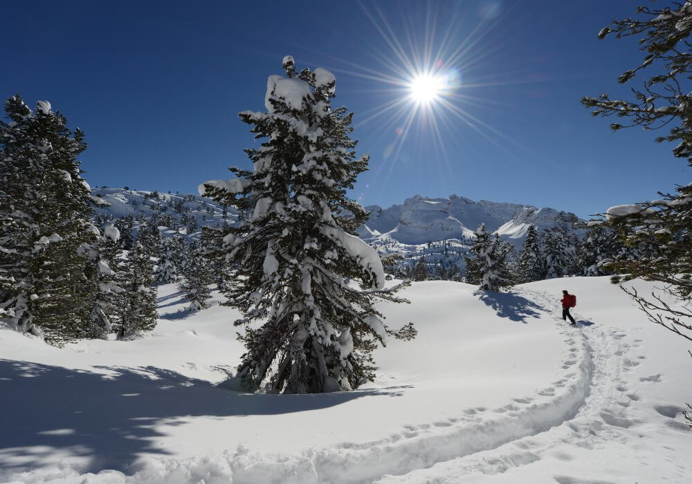 On slopes and tracks – Enjoy your skiing vacation in San Vigilio